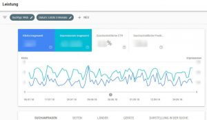 Google Search Console Leistung