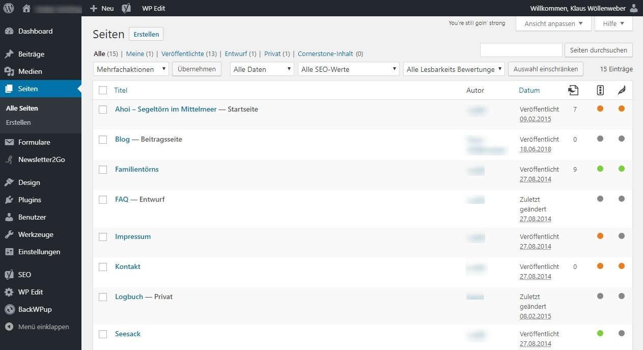 WordPress Webseite erstellen Seiten veröffentlichen