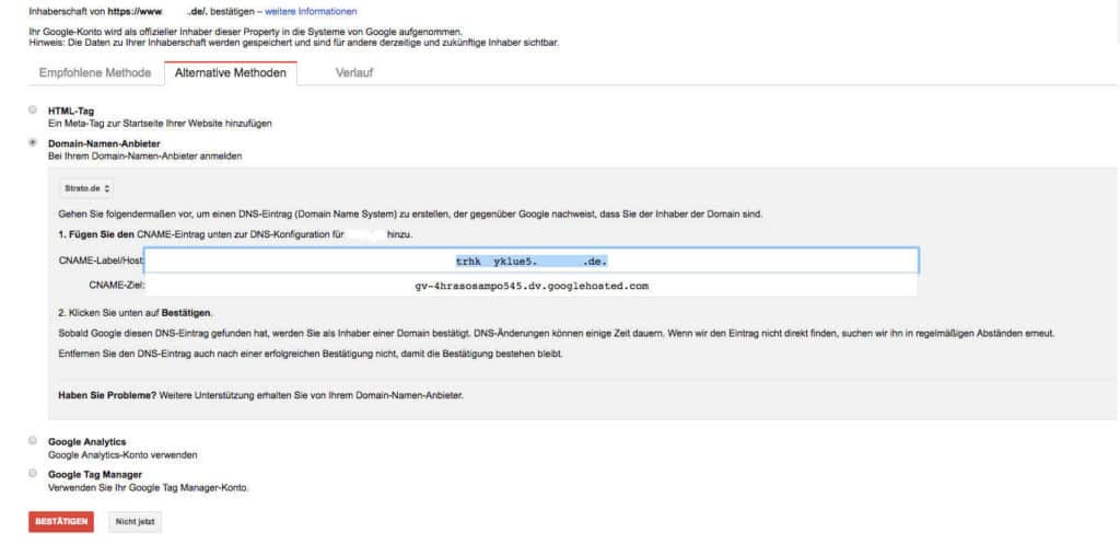 Google Search Console Verifizierung mit Domain Namen Anbieter